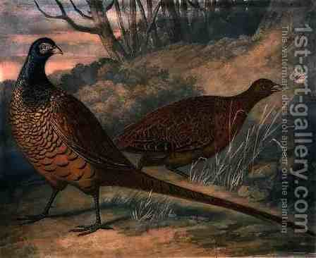Pheasants by (after) James Barenger - Reproduction Oil Painting