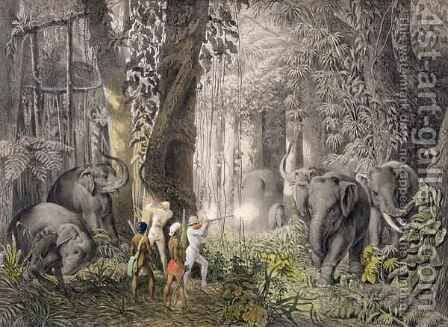 Elephant hunt in the region of Logalla, from 'Travels of Prince Emanual Andrasy in Eastindian Ceylon, Java, China and Bengal' by (after) Andrasy, Graf Emanuel (Mano) - Reproduction Oil Painting