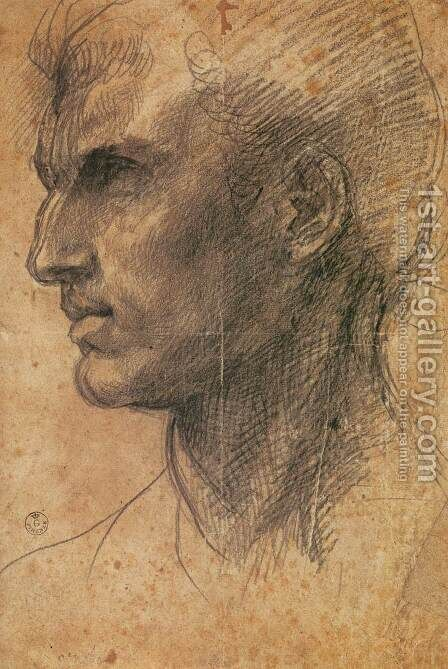 Head of a Man in Profile Facing Left by Andrea Del Sarto - Reproduction Oil Painting