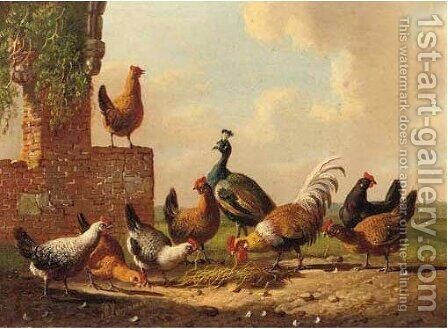 Poultry by a ruin 4 by Albertus Verhoesen - Reproduction Oil Painting