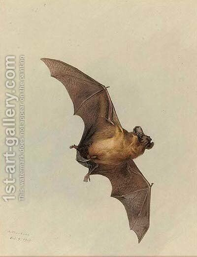 A horse-shoe bat by Archibald Thorburn - Reproduction Oil Painting