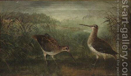 Watering snipe by Henry Leonidas Rolfe - Reproduction Oil Painting