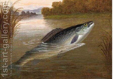 A lea trout from the Pied Bull Stream, St. Nugent, Hertfordshire by A. Roland Knight - Reproduction Oil Painting
