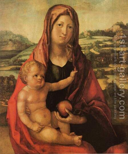 Virgin and Child before a Landscape by Albrecht Durer - Reproduction Oil Painting
