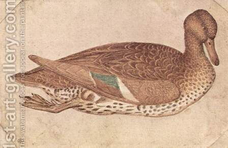 Duck 2 by Antonio Pisano (Pisanello) - Reproduction Oil Painting