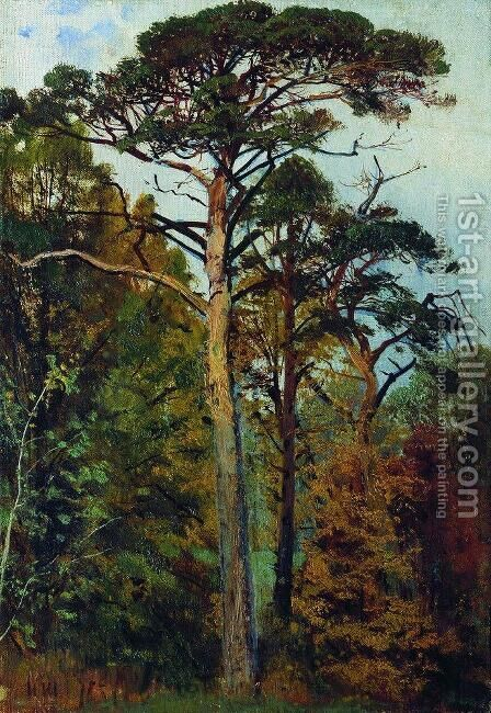 Pines by Ivan Shishkin - Reproduction Oil Painting