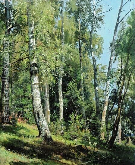 Birch Grove 2 by Ivan Shishkin - Reproduction Oil Painting