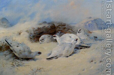 Ptarmigan Seeking Shelter by Archibald Thorburn - Reproduction Oil Painting