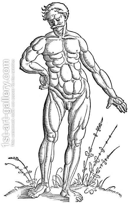 Muscle man standing by Hans Baldung  Grien - Reproduction Oil Painting