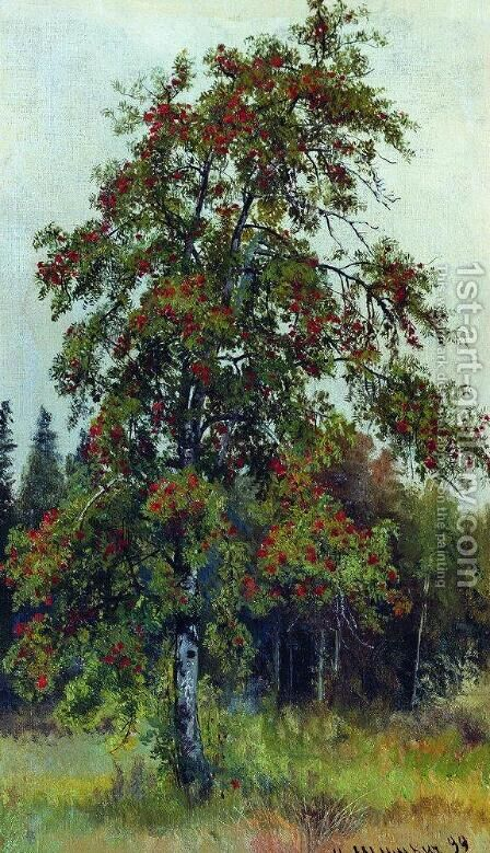 Rowan by Ivan Shishkin - Reproduction Oil Painting