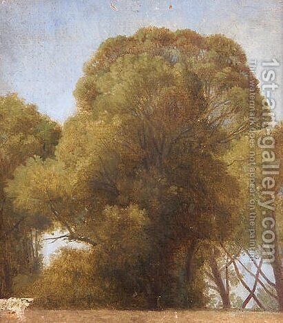 Study of trees by Jean Auguste Dominique Ingres - Reproduction Oil Painting