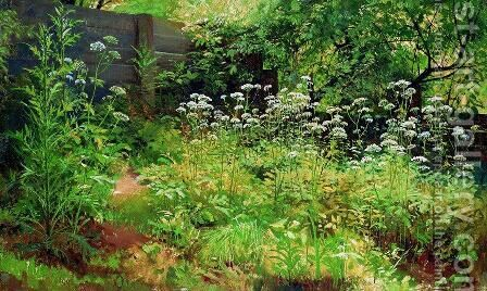 Goutweed-grass. Pargolovo by Ivan Shishkin - Reproduction Oil Painting