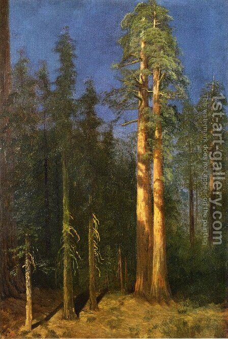 California Redwoods by Albert Bierstadt - Reproduction Oil Painting