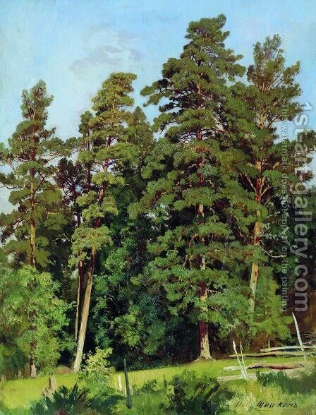 Pine forest 9 by Ivan Shishkin - Reproduction Oil Painting