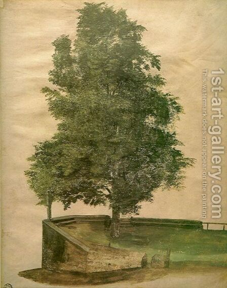 Linden Tree on a Bastion by Albrecht Durer - Reproduction Oil Painting