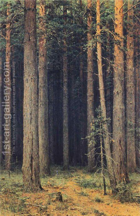 Forest Reserve. Pine Grove by Ivan Shishkin - Reproduction Oil Painting