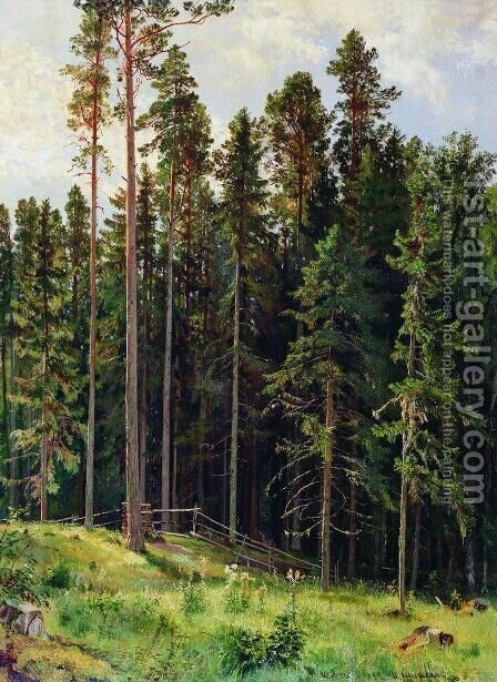 Forest 13 by Ivan Shishkin - Reproduction Oil Painting