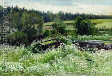 In Siverskaya by Ivan Shishkin - Reproduction Oil Painting
