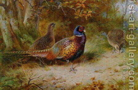 Autumn Covert by Archibald Thorburn - Reproduction Oil Painting