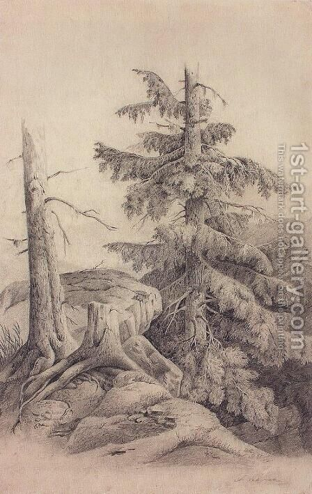 Spruce by Alexei Kondratyevich Savrasov - Reproduction Oil Painting