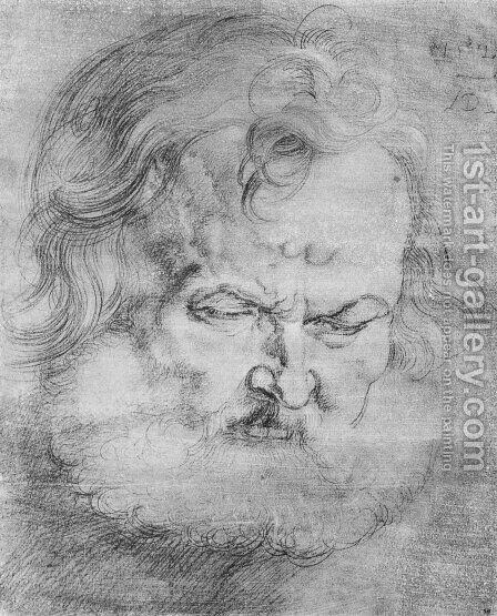 Head of Peter by Albrecht Durer - Reproduction Oil Painting