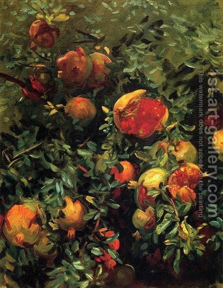 Pomegranates by Sargent - Reproduction Oil Painting