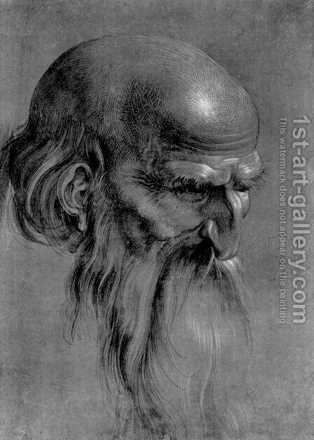 Head Of An Apostle Looking Downward by Albrecht Durer - Reproduction Oil Painting