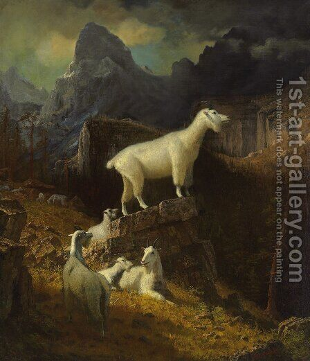 Rocky Mountain Goats by Albert Bierstadt - Reproduction Oil Painting