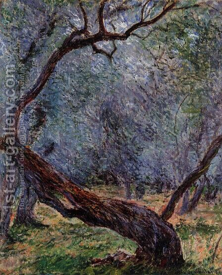 Study Of Olive Trees by Claude Oscar Monet - Reproduction Oil Painting