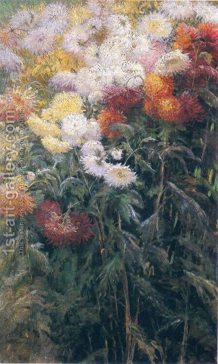 Chrysanthemums  Garden At Petit Gennevilliers by Gustave Caillebotte - Reproduction Oil Painting