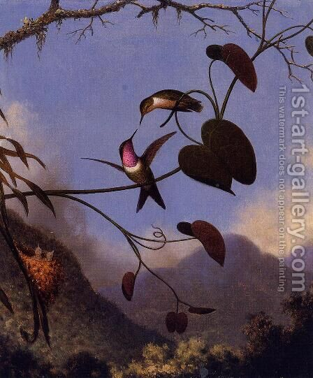 Amethyst Woodstar by Martin Johnson Heade - Reproduction Oil Painting