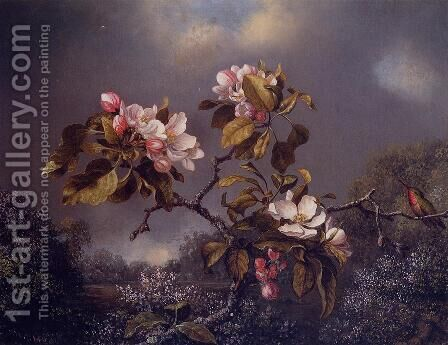 Apple Blossoms And Hummingbird by Martin Johnson Heade - Reproduction Oil Painting