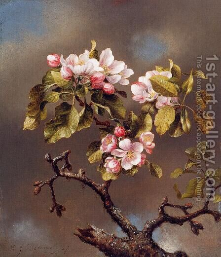 Branch Of Apple Blossoms Against A Cloudy Sky by Martin Johnson Heade - Reproduction Oil Painting