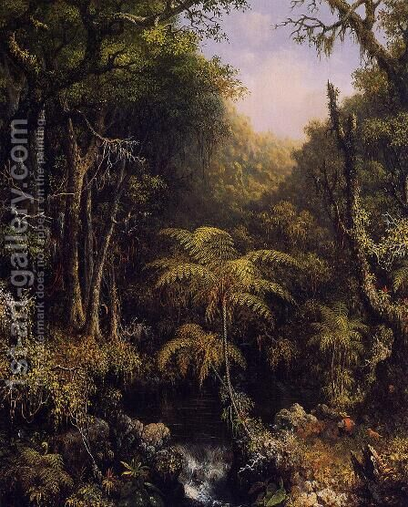 Brazilian Forest by Martin Johnson Heade - Reproduction Oil Painting