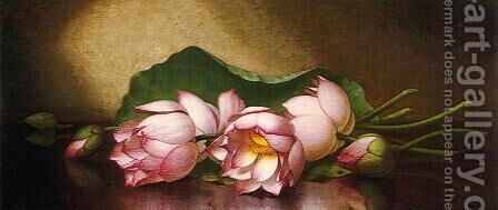 Egyptian Lotus Blossom by Martin Johnson Heade - Reproduction Oil Painting