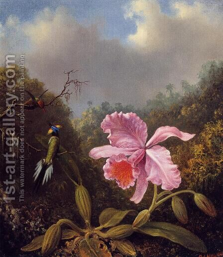 Fighting Hummingbirds With Pink Orchid by Martin Johnson Heade - Reproduction Oil Painting