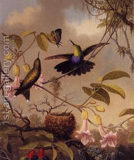 Fort Tailed Woodnymph by Martin Johnson Heade - Reproduction Oil Painting