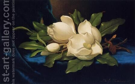 Giant Magnolias On A Blue Velvet Cloth by Martin Johnson Heade - Reproduction Oil Painting