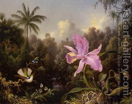 Orchid And Two Hummingburds by Martin Johnson Heade - Reproduction Oil Painting