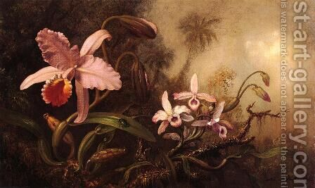 Orchids And A Beetle by Martin Johnson Heade - Reproduction Oil Painting