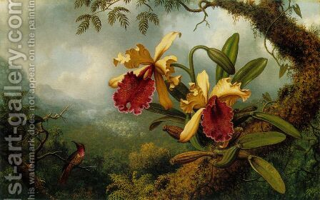 Orchids And Hummingbird by Martin Johnson Heade - Reproduction Oil Painting