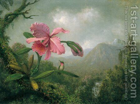 Orchids And Hummingbirds4 by Martin Johnson Heade - Reproduction Oil Painting