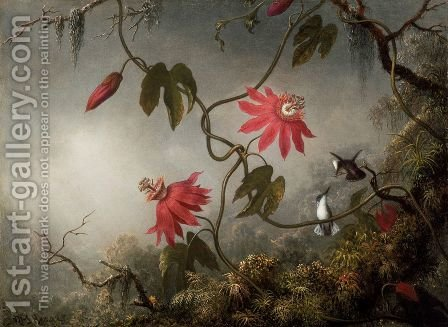 Passion Flowers And Hummingbirds by Martin Johnson Heade - Reproduction Oil Painting