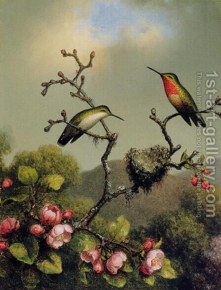 Ruby Throat Of North America by Martin Johnson Heade - Reproduction Oil Painting
