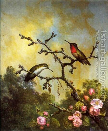Ruby Throated Hummingbirds With Apple Blossoms by Martin Johnson Heade - Reproduction Oil Painting
