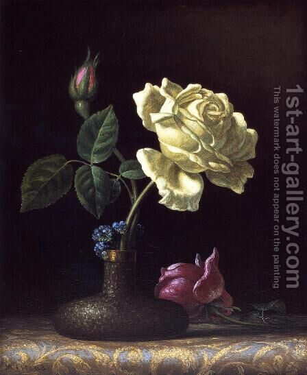 The White Rose by Martin Johnson Heade - Reproduction Oil Painting