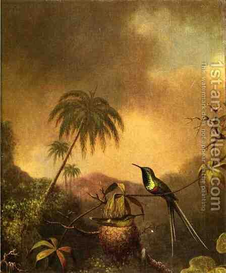 Thorn Tail  Brazil by Martin Johnson Heade - Reproduction Oil Painting