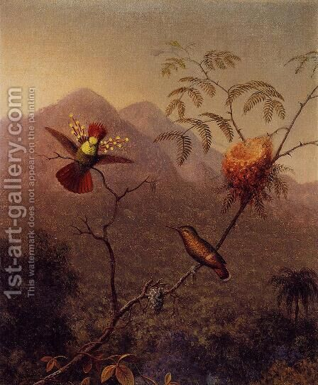 Tufted Coquette by Martin Johnson Heade - Reproduction Oil Painting