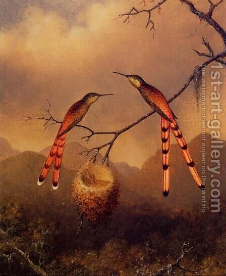 Two Hummingbirds With Their Young by Martin Johnson Heade - Reproduction Oil Painting