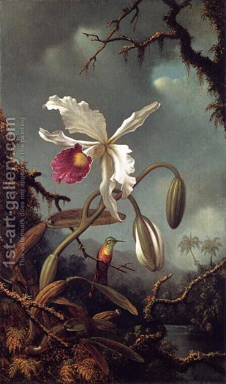 White Brazilian Orchid by Martin Johnson Heade - Reproduction Oil Painting